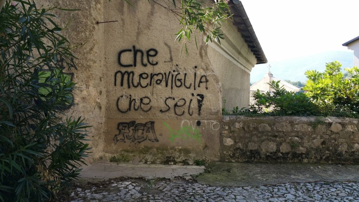 chemeraviglia