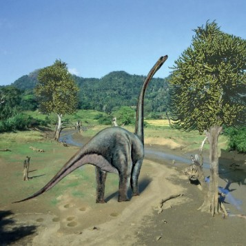 immagineparcotematicodinosauri-550x550